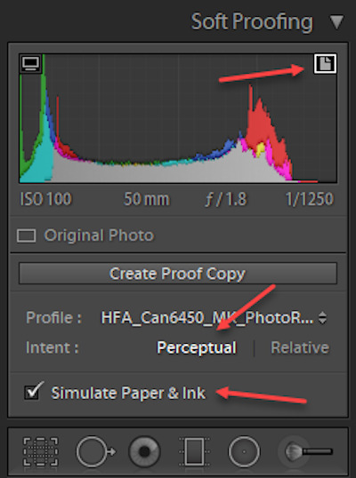 Soft Proofing in Lightroom Step 3