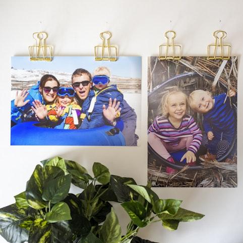 8x10 (20x25cm) large format prints